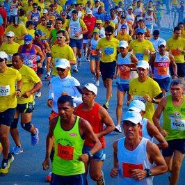 Amanhã tem maratona Maurício de Nassau!